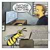 computers-comments-bee-sting-hornets-wasps-nfkn2331_low.jpg
